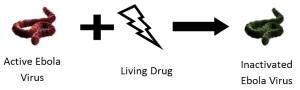 Ebola_livingdrug_Complex